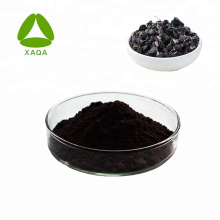 Polvo de extracto de baya de Goji negro natural 100% natural