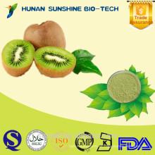 Suministro Actinidia Extracto actinidina / Kiwi fruit Extracto 5% Flavone
