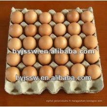 Emballage d'oeufs de poulet
