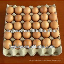 Chicken Egg Packaging