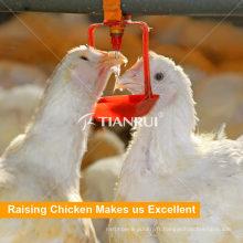 Système d'abreuvement automatique de tétine de poulet de Tianrui Poultry Farm