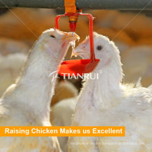 Tianrui Poultry Farm Automatic Chicken Nipple Drinking System