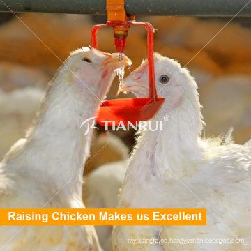 Nuevo diseño de sistema de consumición de la entrerrosca de la pollo del asador de la alta calidad