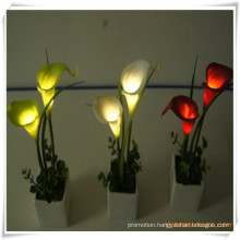 Mini Calla LED Artificial Flowers with Ceramics Pot for Promotion