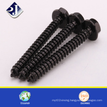 Self Tapping Screw Black Finished
