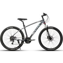 Avasta New Arrival 11 Speed Disc Brake MTB Mountain Bike