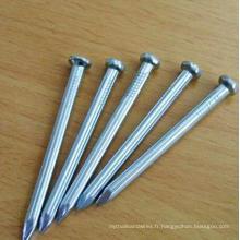 Fabricant en usine de fil de fer à base de fer ongle commun