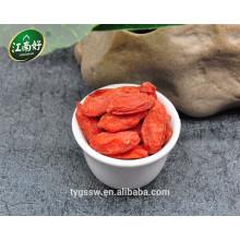 Chinesische Goji Beere Obst Goji Beeren zum Verkauf Goji Beeren Pflanzen zum Verkauf mit Jiangnanhao