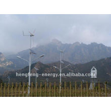 wind turbine 300w for 56W LED street light
