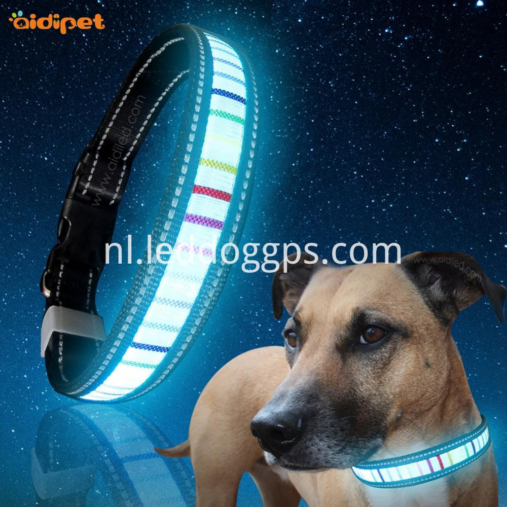 Dog Collar Led Usd