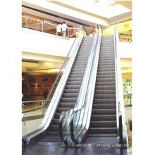 Escalator mécanique rapide