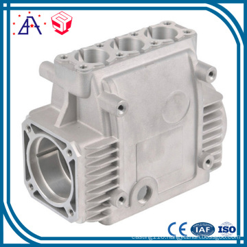 Customized Made Pump Die Casting (SY1222)