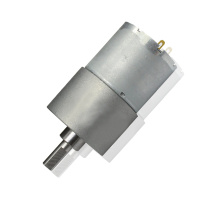 PM DC Carbon Brush Gear Motor