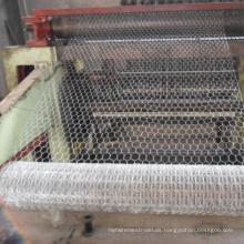 Hexagonal Wire Mesh/Chicken Wire Mesh