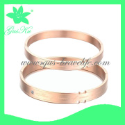 2013 Hot Stainless Steel Bracelet Bangle, Magnetic Bangle, Germanium Bangle (Gus-SBL-001)