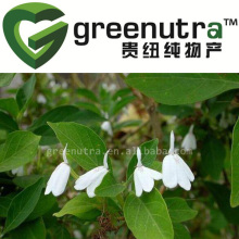 Agrimory Extract
