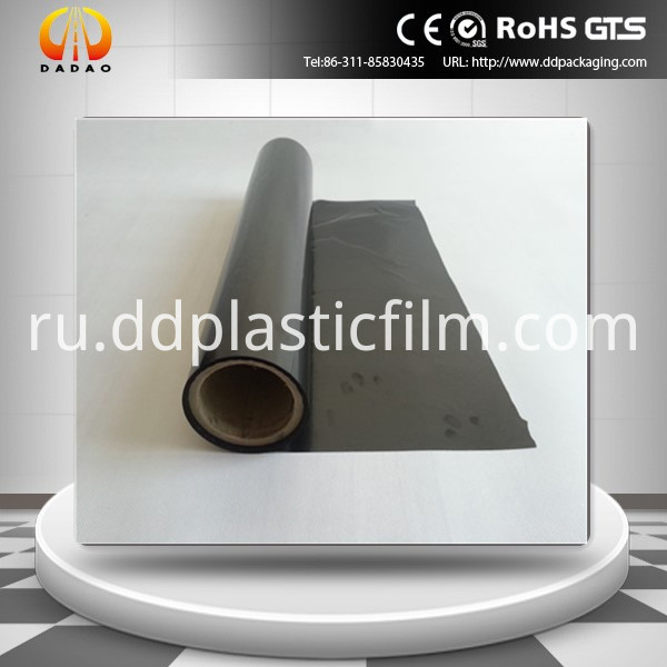 pet black film (28)