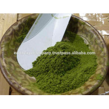 ISO Certified Moringa Leaf Powder from India