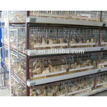 African top selling 8 years service life commercial battery cages for layers for farms