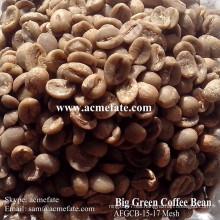 Granos de café verdes crudos Productos populares