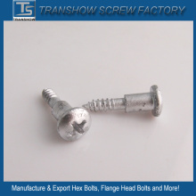 Ruspert Finished Philips Pan Head Screws