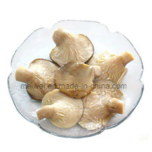 Canned Abalone Mushroom with Best Price