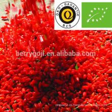 Goji bayas orgánico / goji certificado ecológico