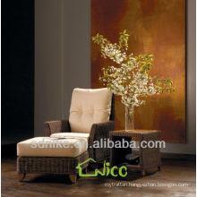 Hot Rattan Leisure sofa /living room furniture SL-020