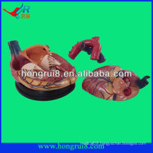 high quality Human medical anatomical heart model for sale new style 4 times enlarged anatomical heart model