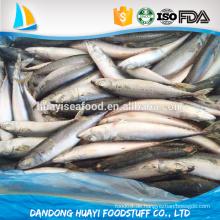 China große Größe gefrorene Pacific Makrele gefrorenen Fisch