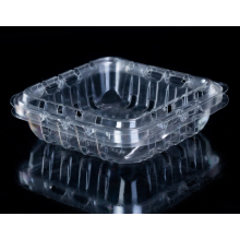Caixa de plástico com mirtilo