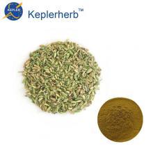 Extrait de graines de fenouil en poudre