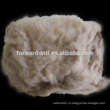 монгольские кашемировые волокна , коммерческого волокна кашемира , кардный кашемир волокна