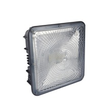 Cool White 50W 75W Led Canopy Light