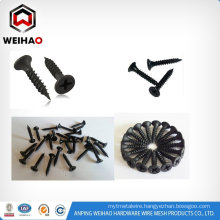 Philips bugle head coarse thread sharp point drywall screw in China