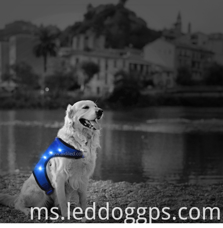 mesh webbing led dog vest