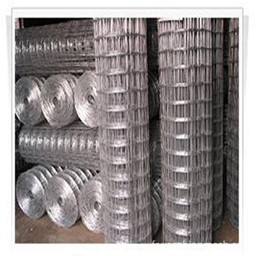 welded wire mesh1