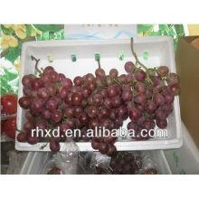 Свежий красный виноград фермы свежего красного винограда