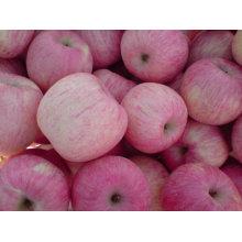 Chine fuji pommes fruits importateurs prix de gros pomme fruit