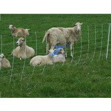 Tierfütterung Wiesen-Geländer-Zaun