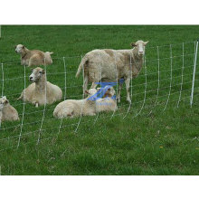 Animal Feeding Grassland Guard Railing Fence