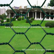 PVC Coated Hexagonal Wire Netting With Low Price