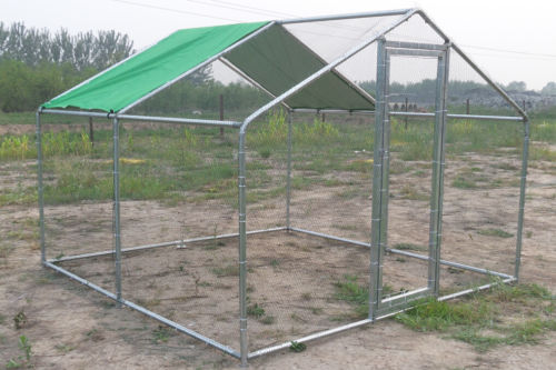 chicken run cage