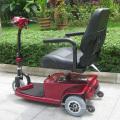 Scooters eléctricos de 3 ruedas personalizados para personas mayores (DL24250-1)