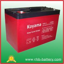 Bateria profunda do ciclo AGM de 12V 85ah para o rv (veículo recreacional)