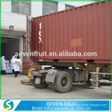 China exporter supply dried walnut walnut light halves