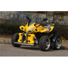 250cc Road Legal ATV with Big X Cover (jy-250-1A)