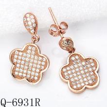 Latest Styles Earrings 925 Silver Jewelry (Q-6931R)
