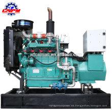 generador de biogás de madera / planta / paja 12kw generador de biogás