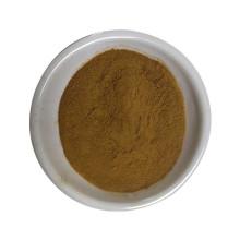 Eliminar o calor e regular a menstruação extrato de motherwort leenurus heterophyllus extrato de leonurina em pó 10: 1 20: 1 30: 1